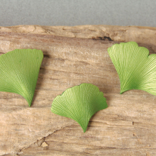 ginkgo_leaf_pins_wc.jpg